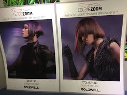 Jacky Hair Design 15 Best Goldwell Colorzoom 2017 In Flux Images Long Hair