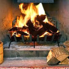 fireplace grate home depot canada heater heat exchanger screen fireplace screen kijiji halifax grate heater outdoor