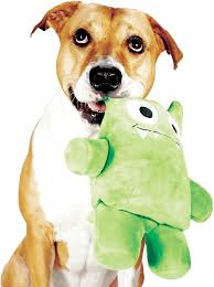 dog happily holding on to her tearrible a plush dog toy that can be torn