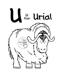 letter n coloring pages for s ox page letters a u words and l