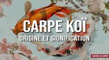 """Résultat de recherche d'images pour """"carpe koi animal totem"""""""