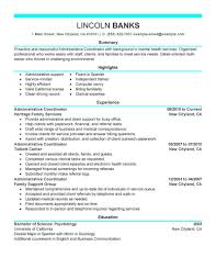 contemporary resume examples .