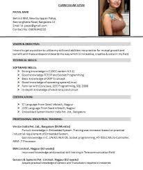American Resume Format Mesmerizing Us Cv Format Funfpandroidco