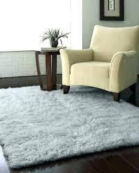 area rugs buffalo ny on rug cleaning