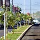 imagem de Palmitos Santa Catarina n-9