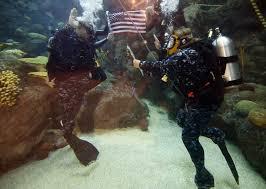 navy officer dives into new tour of duty at florida aquarium tbocom navy intelligence specialist