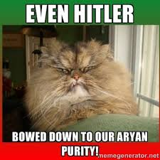 Even Hitler bowed down to our aryan purity! - Grumpy Persian Cat ... via Relatably.com