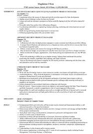 Security Manager Resume Examples Security Product Manager Resume Samples Velvet Jobs 16