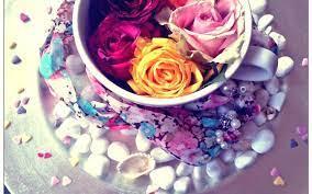 Roses Free Desktop Wallpaper ...