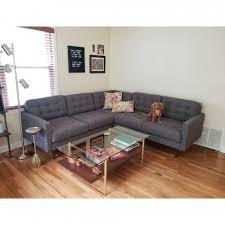 Pet Friendly Furniture & Fabrics | Joybird