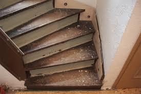 An diesem projekt sollen über 300 personen teilgenommen haben. Treppenrenovierung Treppensanierung Selber Machen Kein Problem Tresabo Treppenrenovierung