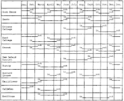 When To Plant Vegetables Chart Succession Planting