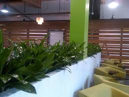 interior landscaping office. Wonderful Landscaping Intended Interior Landscaping Office U