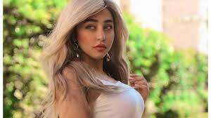 إخلاء سبيل فتاة تيك توك ريناد عماد - السياسي