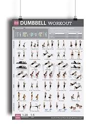 dumbbell exercise workout poster for women laminated exercise for women leg arm