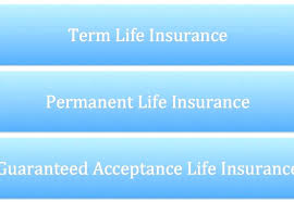 Aarp Insurance Quote Cool Aarp Life Insurance Quotes Marvelous Permanent Life Insurance 48