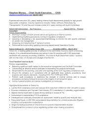 resume for internal auditor chief sales lewesmr internal auditors job description