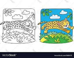 little cheetah or jaguar coloring book vector image