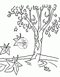 Small Picture Fall Tree Leaves Coloring Page Coloring Pages
