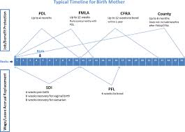 Fmla Cfra Chart New Parent Leave County Of Marin