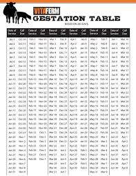 Cattle Gestation Chart Vitaferm Concept Aid Gestation Calculator Vitaferm