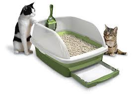 tidy-cat-breeze-review. Components: 1 litter box ...