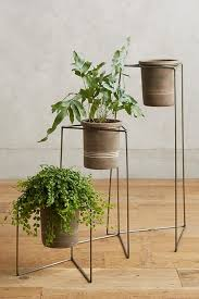 BUY IT  Plant Stand ...