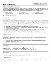 Audit Cv Unique Sample Audit Resumes Daway Dabrowa Sweep18
