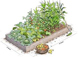 4x8 raised bed vegetable garden layout. Modren Garden 48 Raised Bed Vegetable Garden Layout How To  Plant A 4x8 R