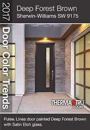 front door color trends 2014. deep forest brown (sherwin-williams sw 9175) \u2013 with grace and presence, front door color trends 2014