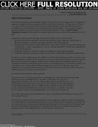 Executive Summary Resume Example Templates Sample For Startup