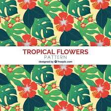 Topical Pattern Amazing Topical Flowers Pattern With Flat Design Vector Free Download