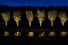 full size of solar up lights for trees with solar lights for trees nz plus outdoor
