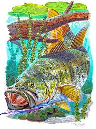 gar painting largemouth bass by carey chen