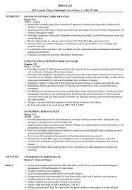 Investment Risk Manager Resume Samples Velvet Jobs