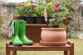 Gardening Myth: Don't Add Gravel to Your Garden Containers - Gardening  Channel