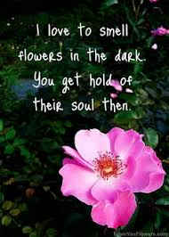 The Beauty Of Flowers Quotes Best Of 24 Best Quotes We Love Images On Pinterest Inspire Quotes Be