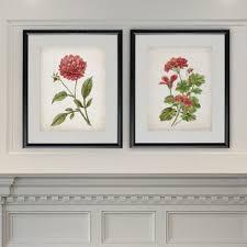 birch lane botanical wall art