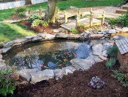 garden pond supplies. We Sell Locally Grown, Mature Well-established Plants Ready To Be Placed In Your Pond. Come And Talk With Our Water Garden Experts Find Out Which Pond Supplies