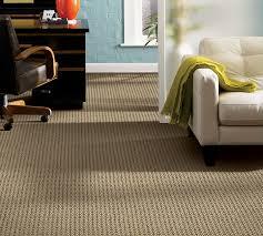 carpet rugs
