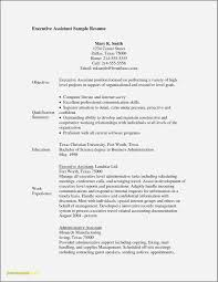 Resume Objective Examples For Management Position Elegant Retail