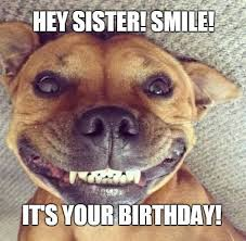 Image result for funny happy birthday