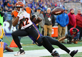 Bengals Experimenting With Mohamed Sanus Role And Its