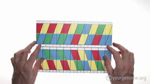Dna Origami How To Fold A Double Helix Youtube