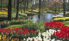 Resultado de imagem para jardim do eden localização