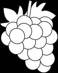 grapes clipart black and white. grapes clipart black and white free images 2 r
