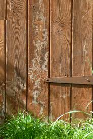 Rustic Furniture Stain Free Images Grass Texture Floor Window Building Wall