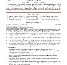 Resume Templates Literarywondrous Sample Summary Objectives For ...