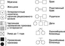 Генетика и здоровье человека Биология Общая биология  Рис 101