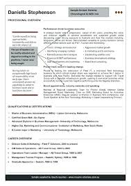 Professional Resume Writing Executive Resume Writers 6 Template